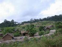 Niabably, un village w� au coeur du pays n�yo et godi�
